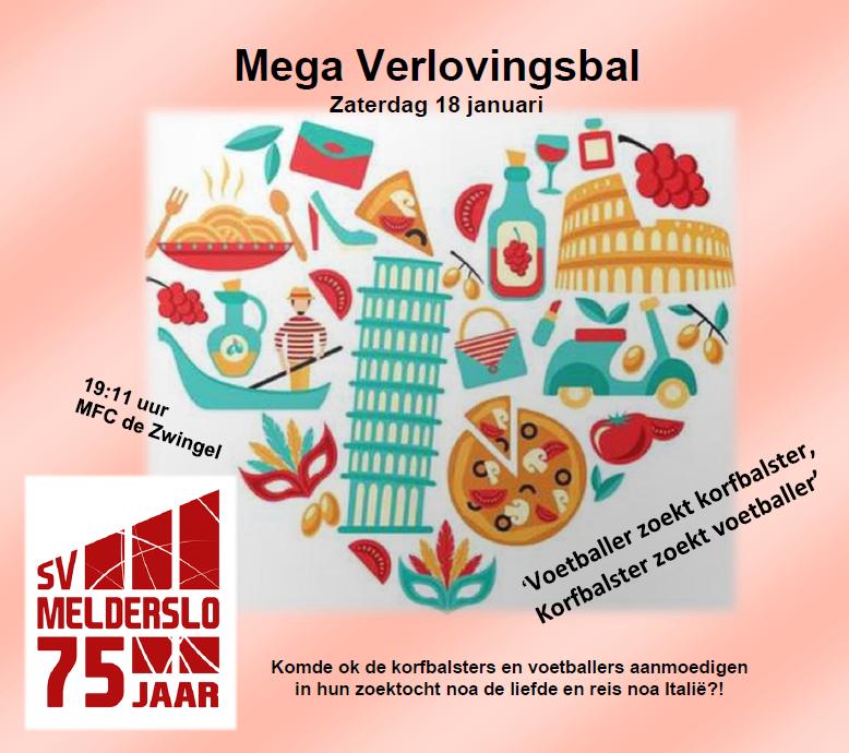 Poster mega velovingsbal